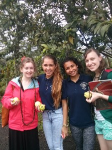 Left to Right: Carolyn, Kamaile, Malia and I after our guava harvest.